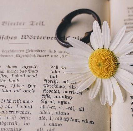 Deutsch B1.2. Grammatik & Konversationskurs